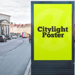 Citylight ( Işık Geçiren Raket Kağıdı )